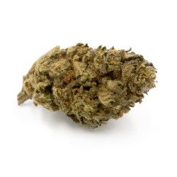 Fleurs CBD Orange Bud - Indoor